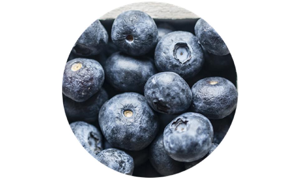 antioxidantes protectores